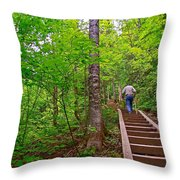 Lots Of Steps On La Chute Trail In Forillon Np-qc Throw Pillow