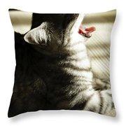 Lotti Throw Pillow