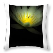 Lotus And Bee Poster Throw Pillow
