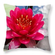 Lotus Cloud Throw Pillow