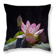 Lotus Enchantment Throw Pillow