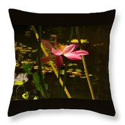 Lotus Flower At The West Lake Throw Pillow