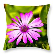 Lotus Flower Color Picture Throw Pillow