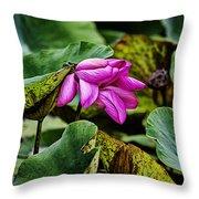 Lotus Flower- Gungarre Billabong Throw Pillow
