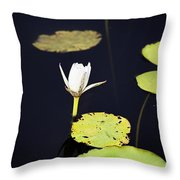 Lotus Flower- Gungarre Billabong V2 Throw Pillow
