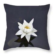 Lotus Flower- Gungarre Billabong V4 Throw Pillow