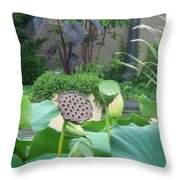 Lotus Flower In Lily Pond Throw Pillow