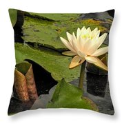 Lotus Flower In White Throw Pillow