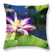 Lotus Flower V6 Throw Pillow