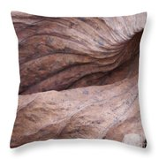 Lotus Leaf In Fall Throw Pillow