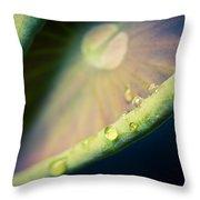 Lotus Leaf Unfurling Throw Pillow