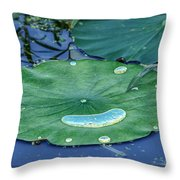 Lotus Picture Of Happiness Throw Pillow