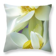 Lotuses In Bloom Throw Pillow