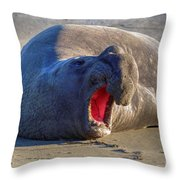 Loud Mouth Throw Pillow