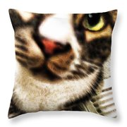 Louis Iv Up Close Throw Pillow