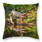 Louisiana Bayou 2 - Paint Throw Pillow