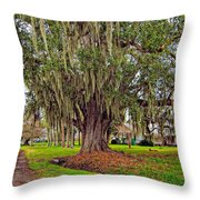 Louisiana Country Throw Pillow