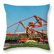 Louisiana Giant Throw Pillow