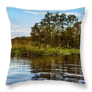 Louisiana Lake Throw Pillow
