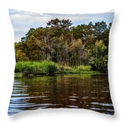 Louisiana Lake II Throw Pillow
