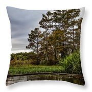 Louisiana Landscape Throw Pillow