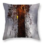 Louisiana Light Post Throw Pillow