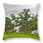 Louisiana Winter 2 Throw Pillow