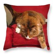 Lounging Spirit Throw Pillow