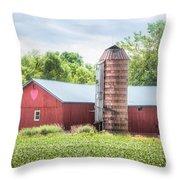 Love Barn Throw Pillow