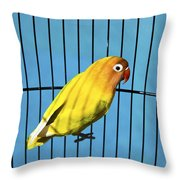 Love Bird Throw Pillow