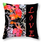 Love Fall Edition Throw Pillow