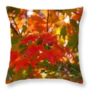 Love Fall Throw Pillow by Lorena Mahoney