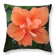 Love Flowers 3 Throw Pillow