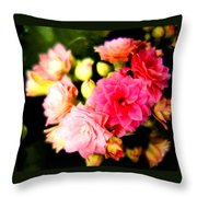 Love Hurts But Who Cares Throw Pillow
