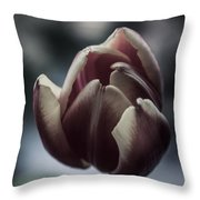 Love In The Winter Throw Pillow