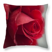Love Is A Canvas Throw Pillow