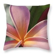 Love Is The Beauty Of The Soul  Throw Pillow