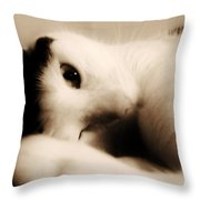 Love Mine Throw Pillow