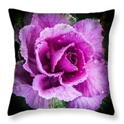 Love Of Lavender Throw Pillow