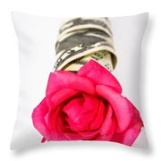 Love Of Money Throw Pillow