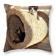 Love Our Cat Condo Throw Pillow