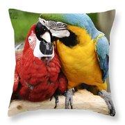Love Parrotts Throw Pillow