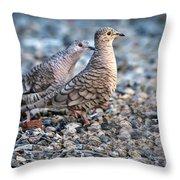 Love Peck Throw Pillow
