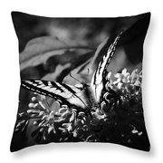 Eclectus Parrot  - Eclectus Roratus Throw Pillow