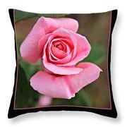 Love Roses Throw Pillow