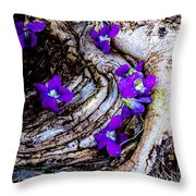 Love Tinted Glasses Throw Pillow