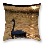 Love Will Lead You Back Throw Pillow