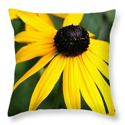 Loveliness Throw Pillow