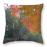 Lovely Autumn Colors Throw Pillow