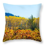 Lovely Fall Colors Throw Pillow